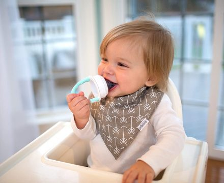 Best Baby Fruit Feeder Review