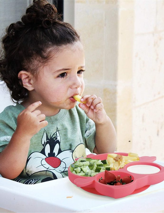Best Suction Plates for Toddlers
