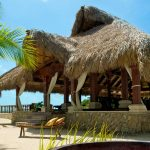 Mexican Palm Thatch Rolls