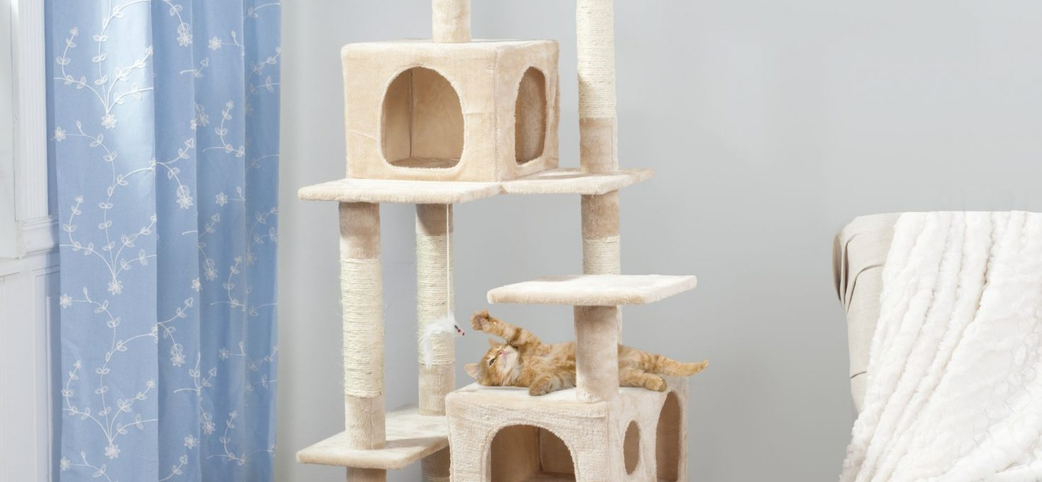 Cat Play House Buyer's Guide