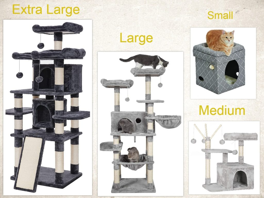 Size of cat house